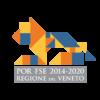 Logo Regione Veneto - Por FSE 2014-2020